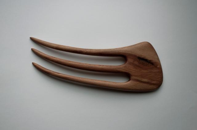 beech fork
